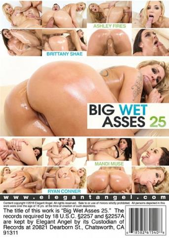 Big Wet Asses 25 from Elegant Angel back cover