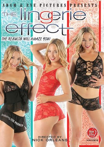 The Lingerie Effect from Adam & Eve front cover