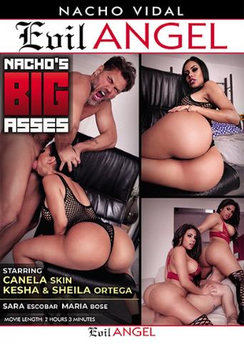Nacho's Big Asses from Evil Angel: Nacho Vidal front cover